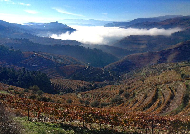 View of the Douro Valley with cloud