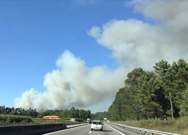 Forest fire between Esposende and Antas