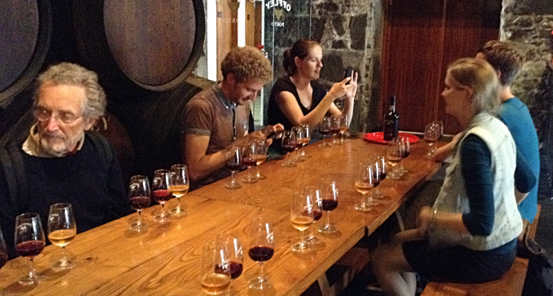 Port wine tasting at Offley's wine cellar in Gaia