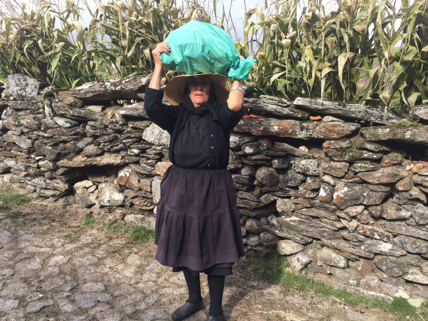 n old lady carrying maize cobs on her head