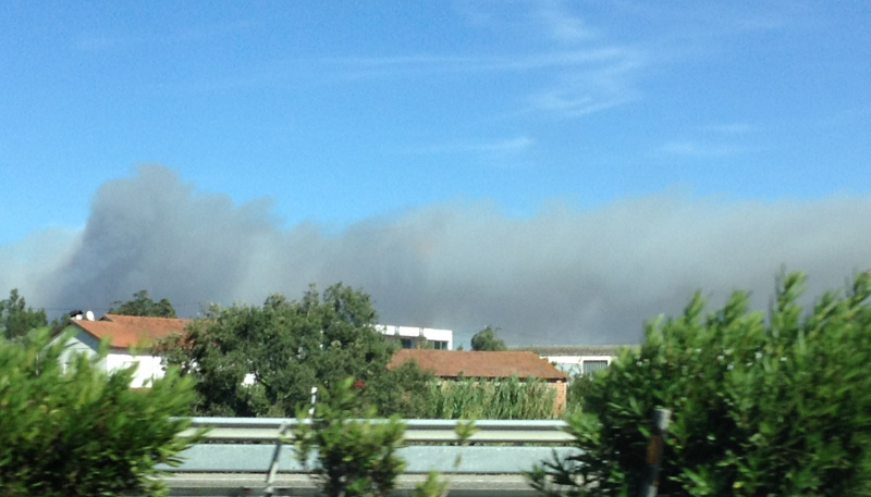 Fire to east of the A1 highway north of Pombal