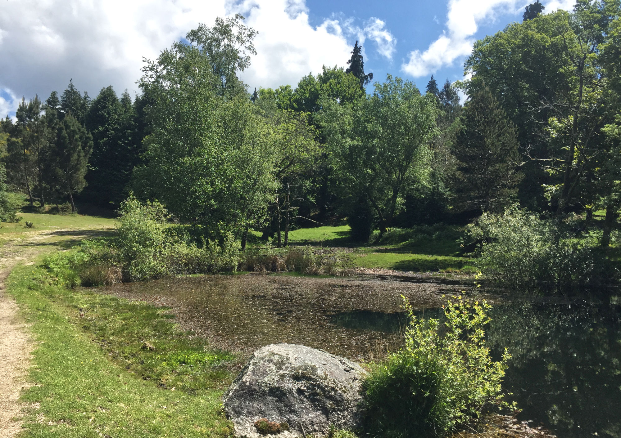 A pond in 'park land' at the top of the mountain