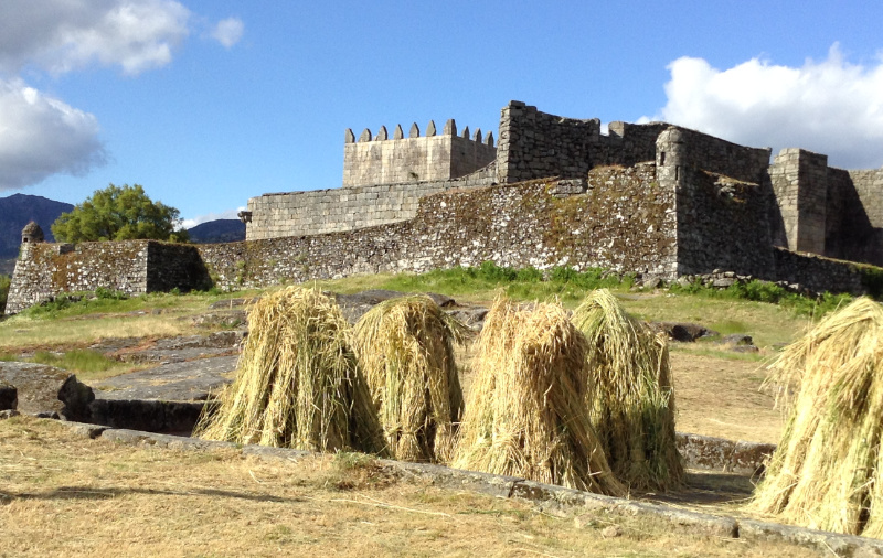 Stooks on the threshing floor below Lindoso castle