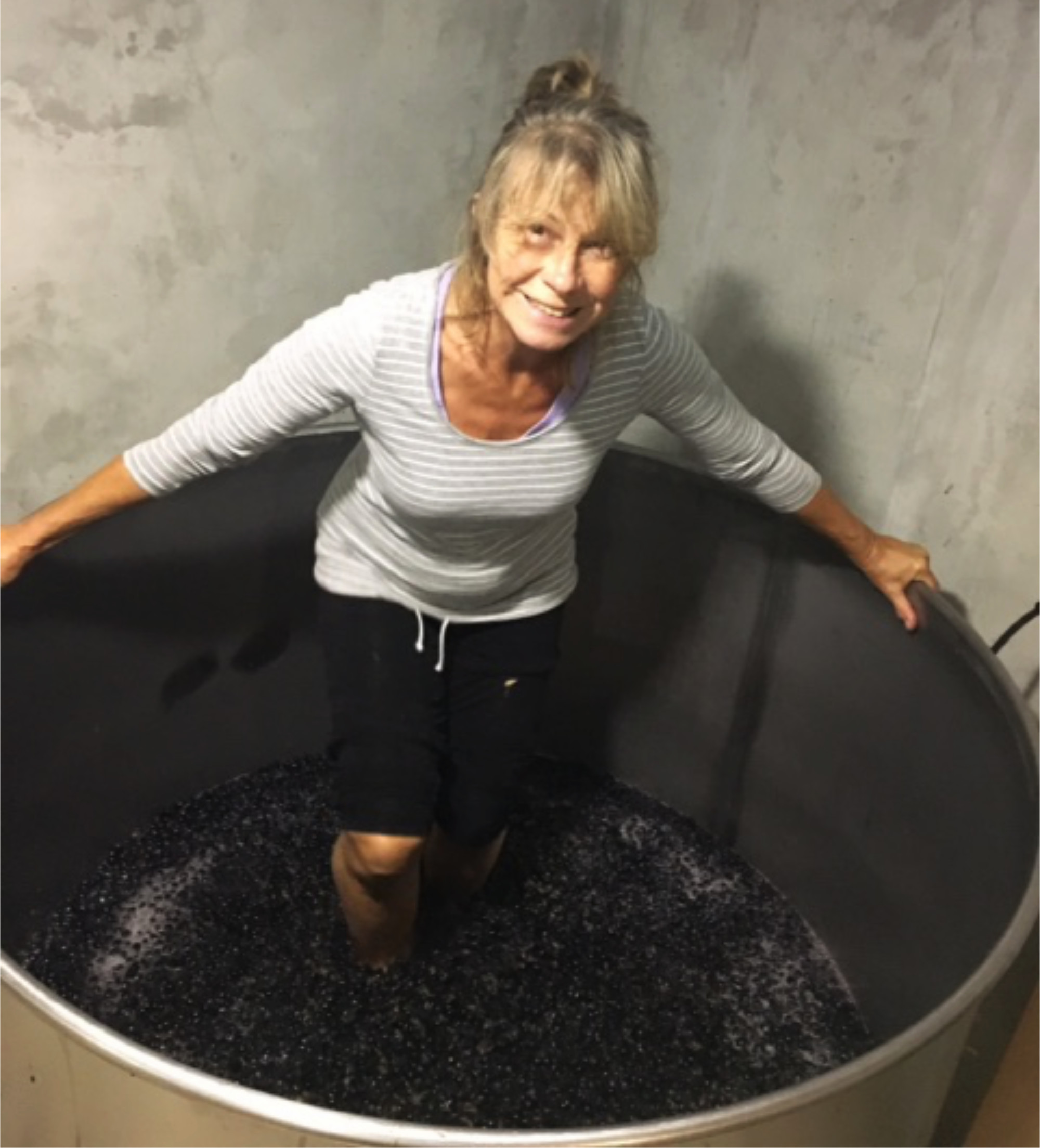 Friend L treading black grapes in a huge vat