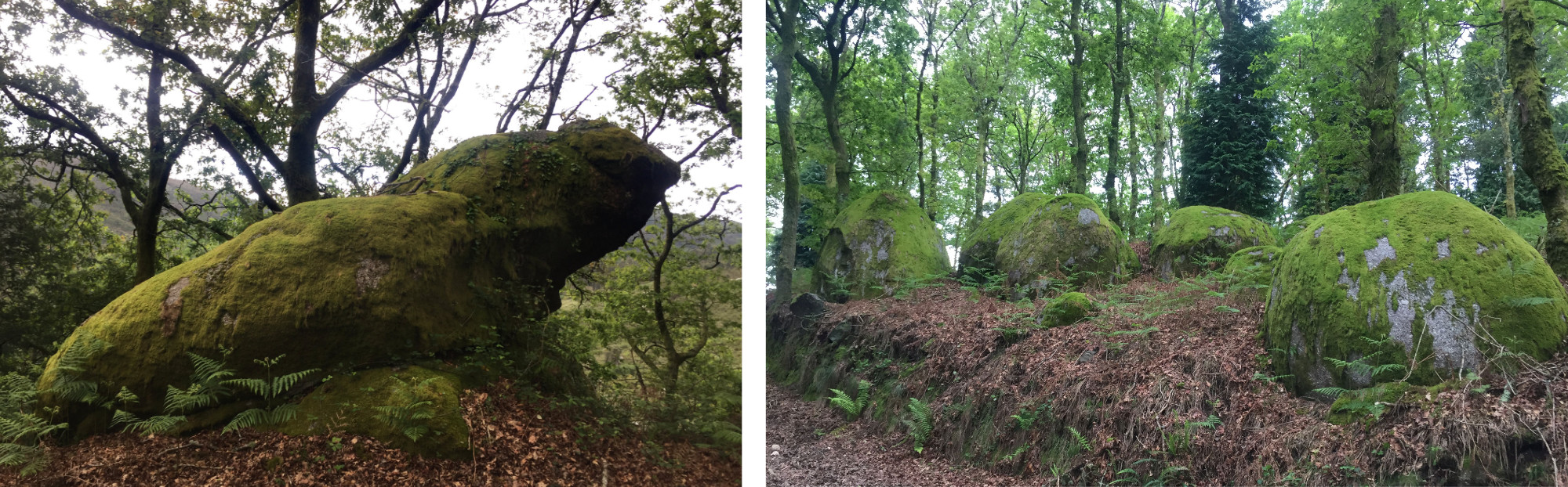 Two pictures of mossy boulders
