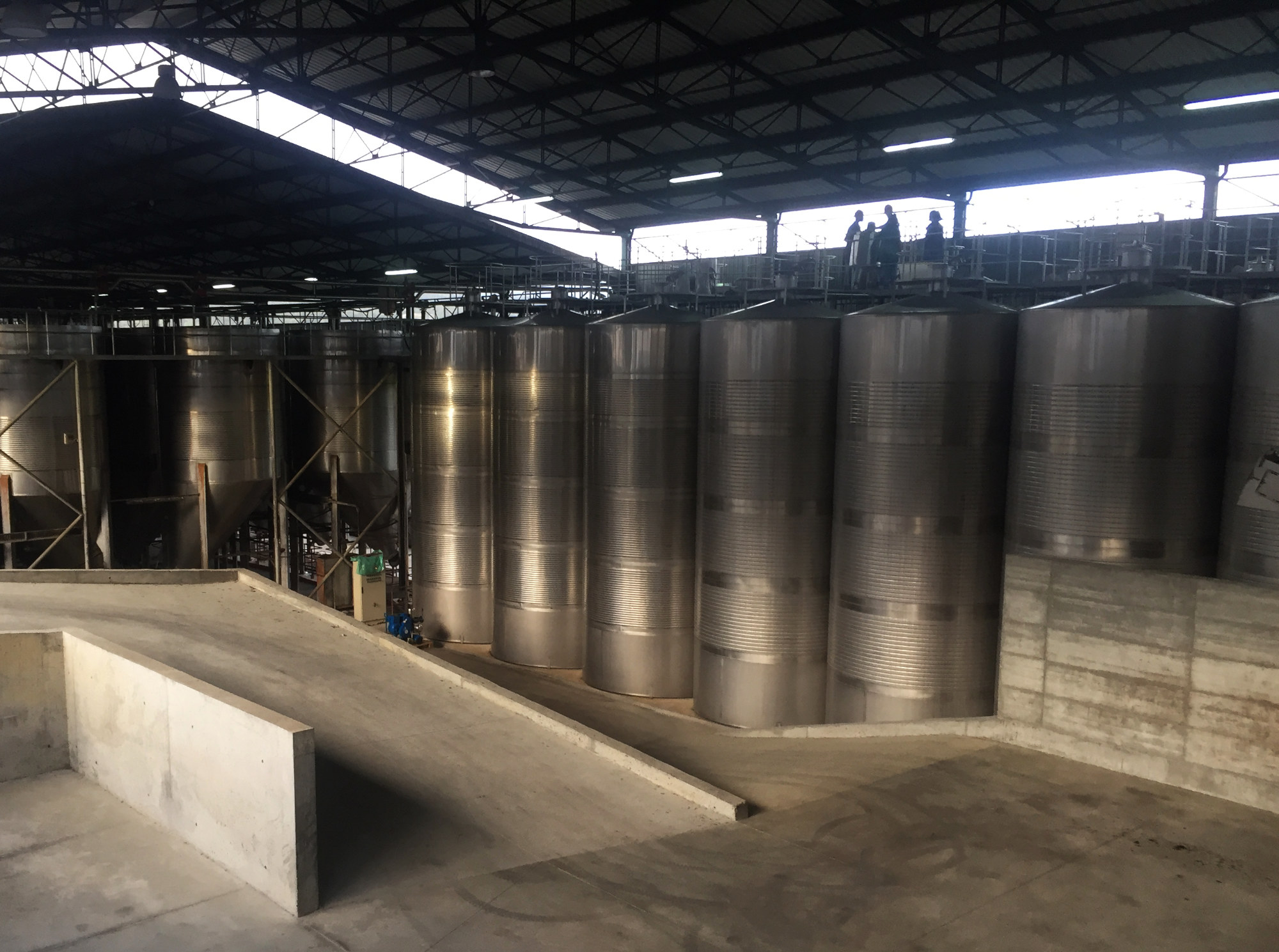 Storage chambers for wine